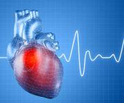 Cardiology/ Cardiac Surgery