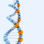 DNA Cleanup and Normalization