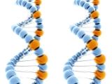Eldan_DNA_double