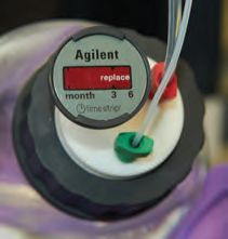 Agilent- A-Line Stay Safe caps
